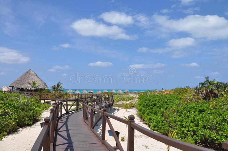 stranddyn fotografering för bildbyråer