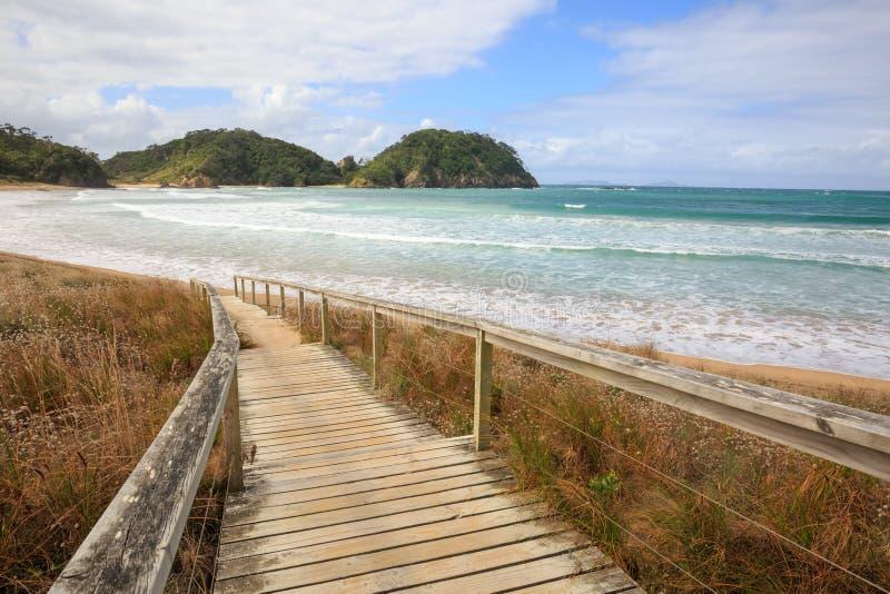 Strandeingang in Neuseeland stockfotografie