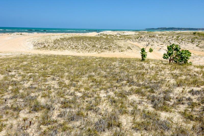 Stranden av Barra de Cunhau n?ra pipaen, Brasilien arkivbild