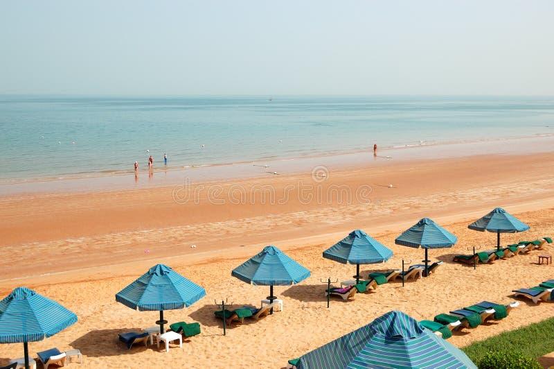 Stranden av det lyxiga hotellet arkivfoto