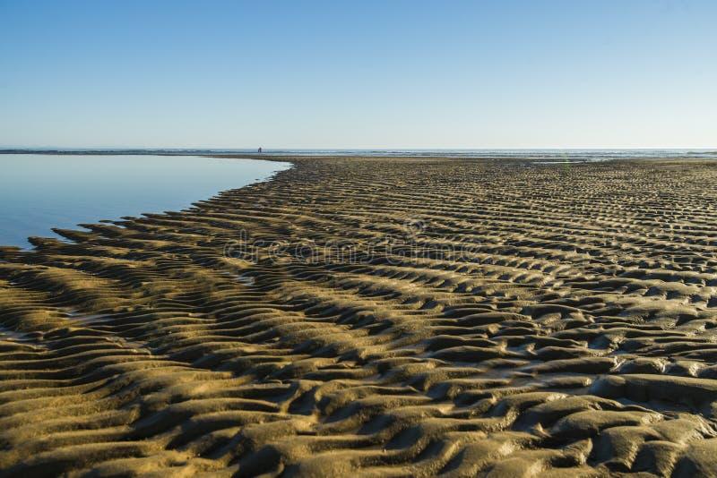 Stranden av havet arkivbild