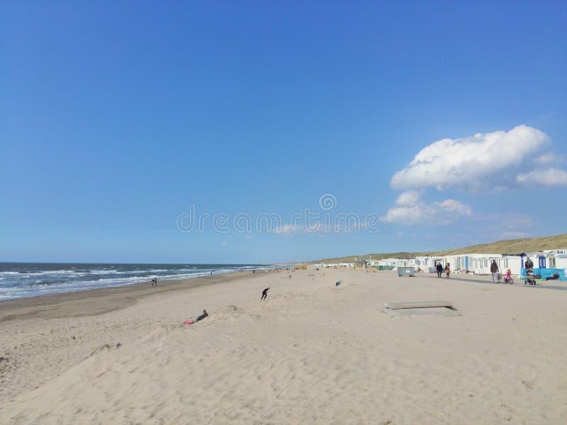 Stranden av Wijk aan Zee Nederländerna royaltyfri fotografi
