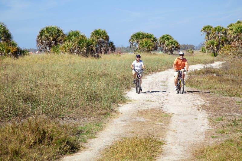 stranden cyklar ridningpensionärer arkivfoto