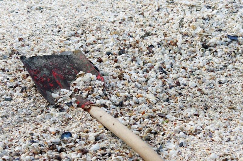 Stranden med beskjuter arkivfoton