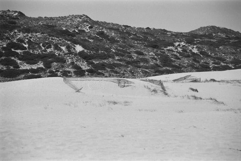 stranden med dyn numrerar tre royaltyfri foto