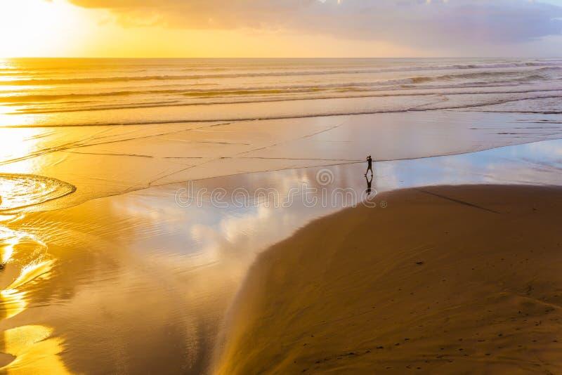 Stranden nära Auckland royaltyfri fotografi