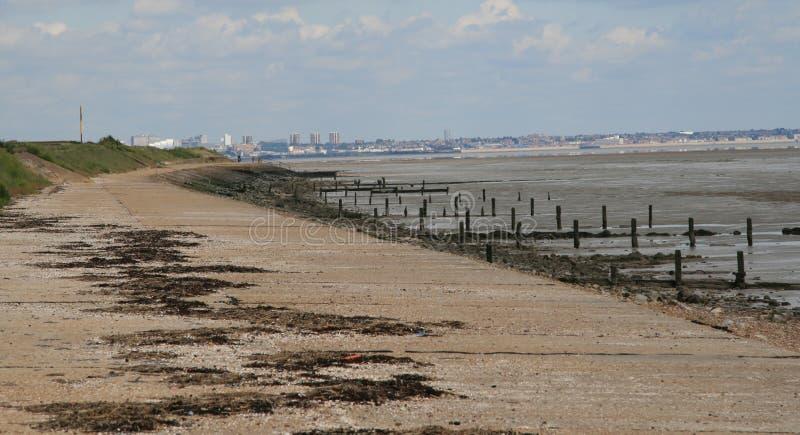 Stranden på korn fotografering för bildbyråer