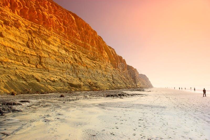 stranden sörjer torrey royaltyfria foton