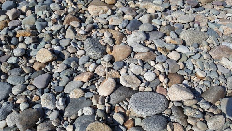 Stranden vaggar royaltyfri bild