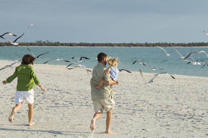strandfamilj som kör till arkivfoton