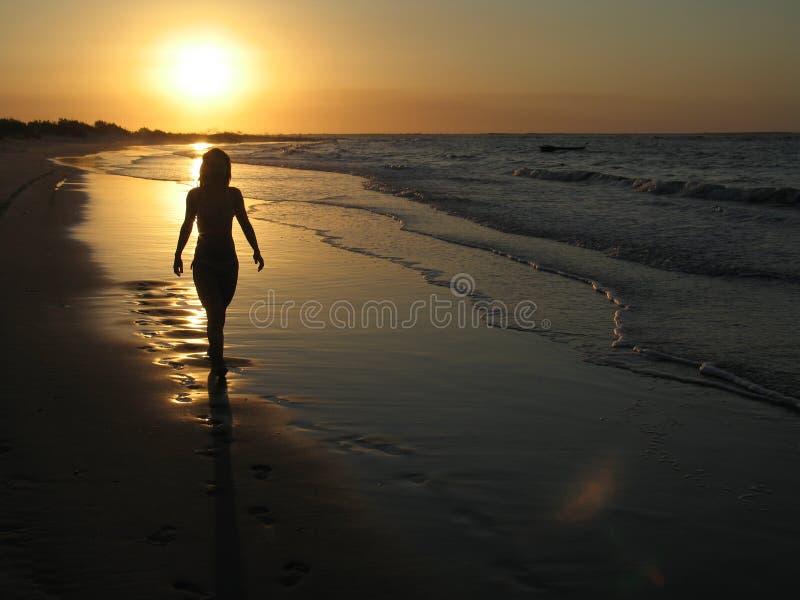 strandflickasolnedgång royaltyfri fotografi