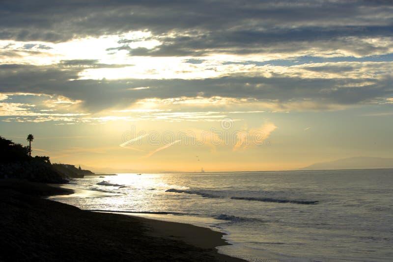 strandflyg över seagullssoluppgång arkivfoton