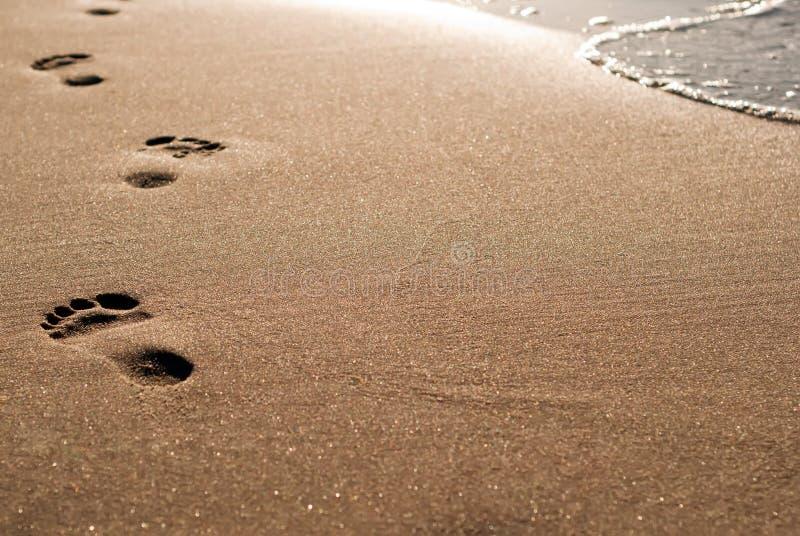 strandfotspår arkivfoto