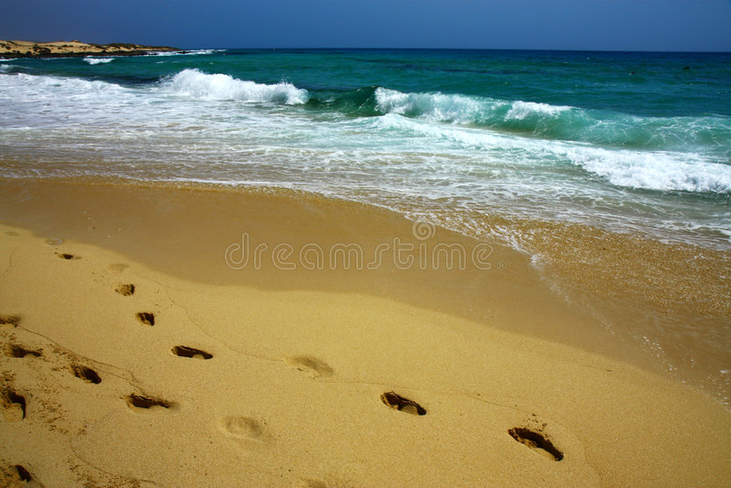 strandfotspårwaves royaltyfri fotografi