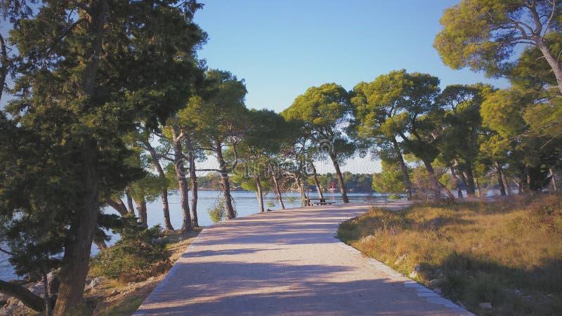 Strandgang op Adriatische overzees stock fotografie
