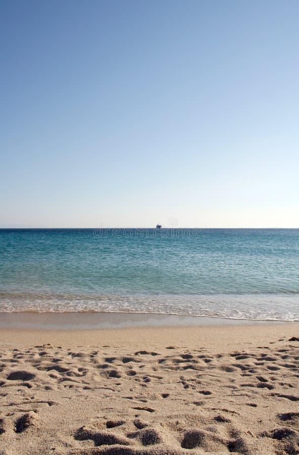 strandgrek fotografering för bildbyråer