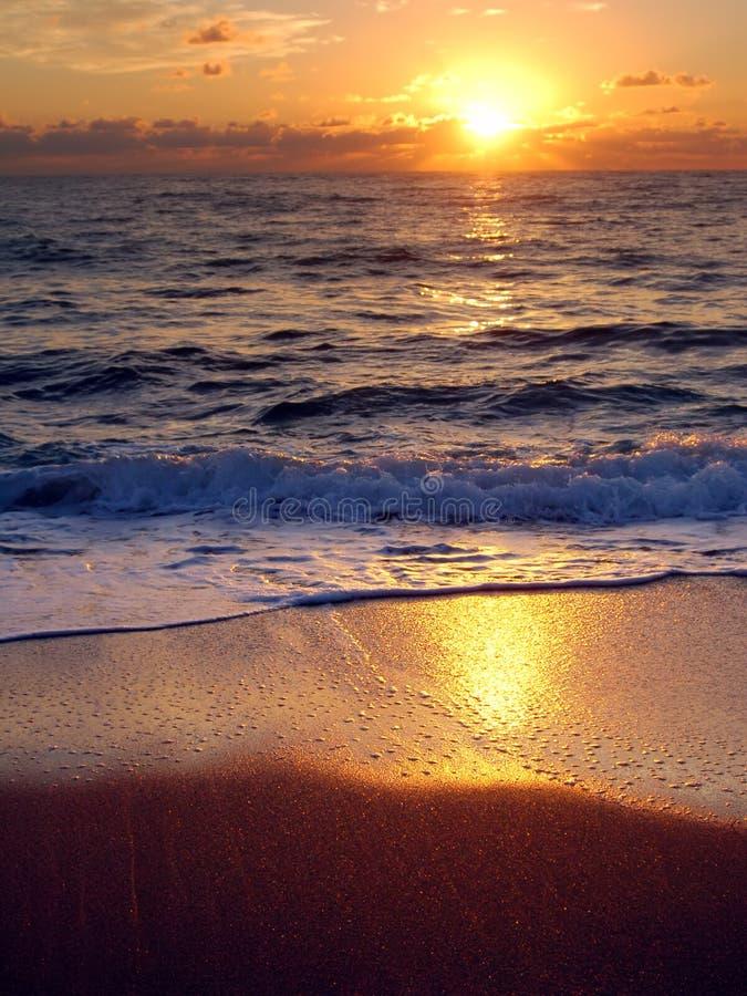 strandgryningen florida gömma i handflatan arkivfoto