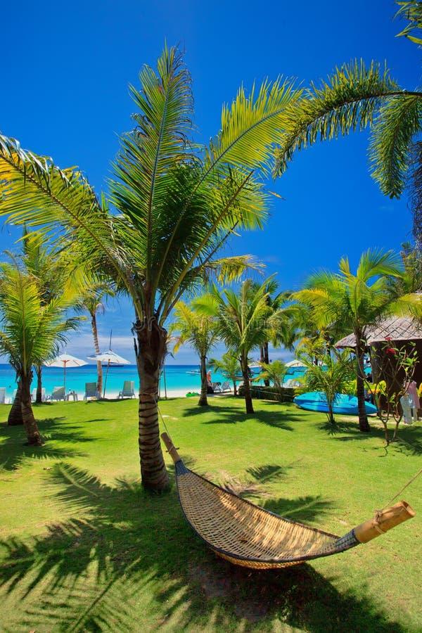 Strandhängmatta under palmträdet vid havet på Koh Lipe arkivfoto