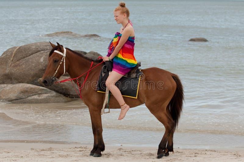 strandhästridning royaltyfri bild