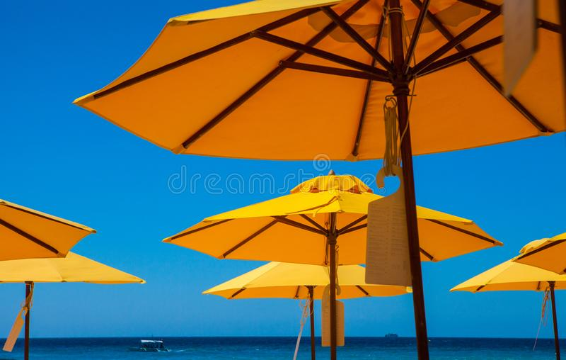 StrandH-paraplyer fotografering för bildbyråer