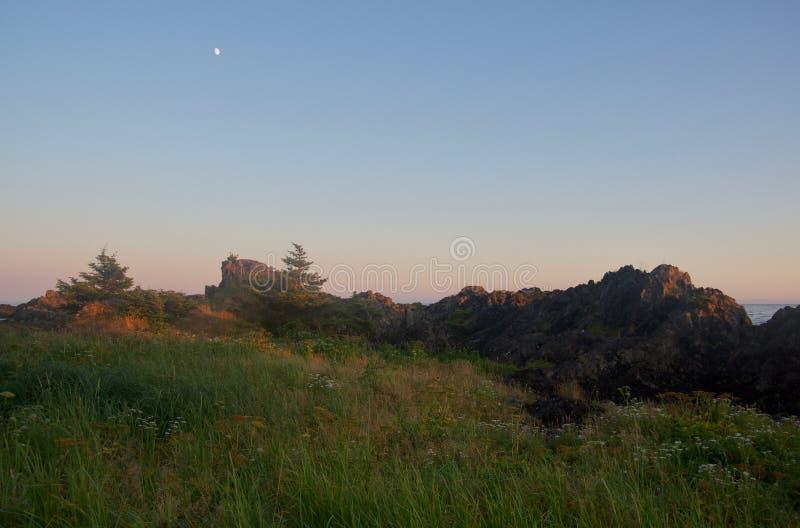 Strandhafer und Blumen nahe felsigem Ufer bei Sonnenuntergang mit dem Mond obenliegend stockfoto