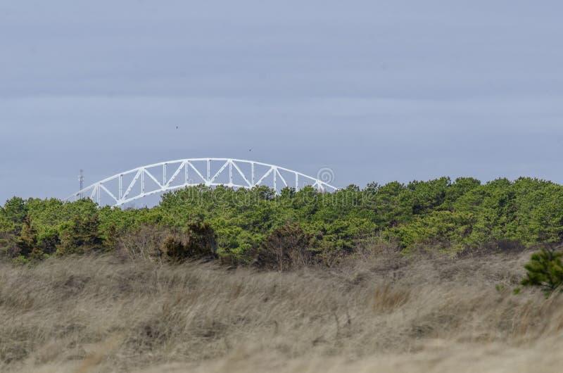 Strandhafer und Dünen gepeitscht durch starke Winde an Scusset-Strand lizenzfreies stockbild