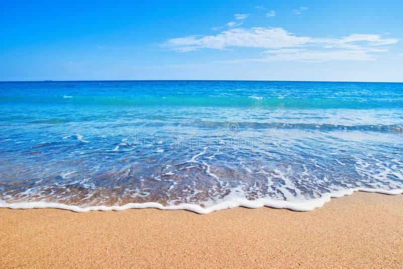 strandhav royaltyfri bild