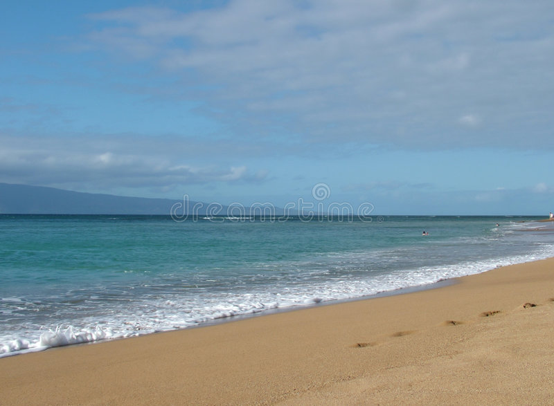 strandhavsky arkivfoto