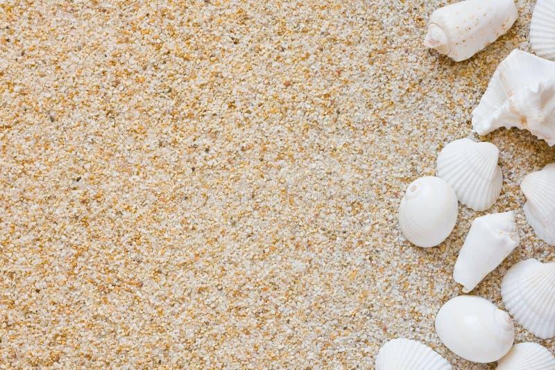Strandhintergrund lizenzfreies stockbild