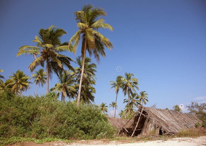 strandhydda arkivfoton