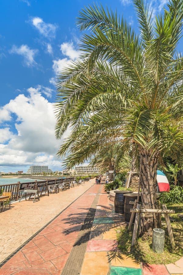 Strandküste gezeichnet mit Palmen der Verzerrungs-Küsten-, Eichenmode, der Depot-Insel-Küstengebäude und des Schiff-Hotels Campan stockbild