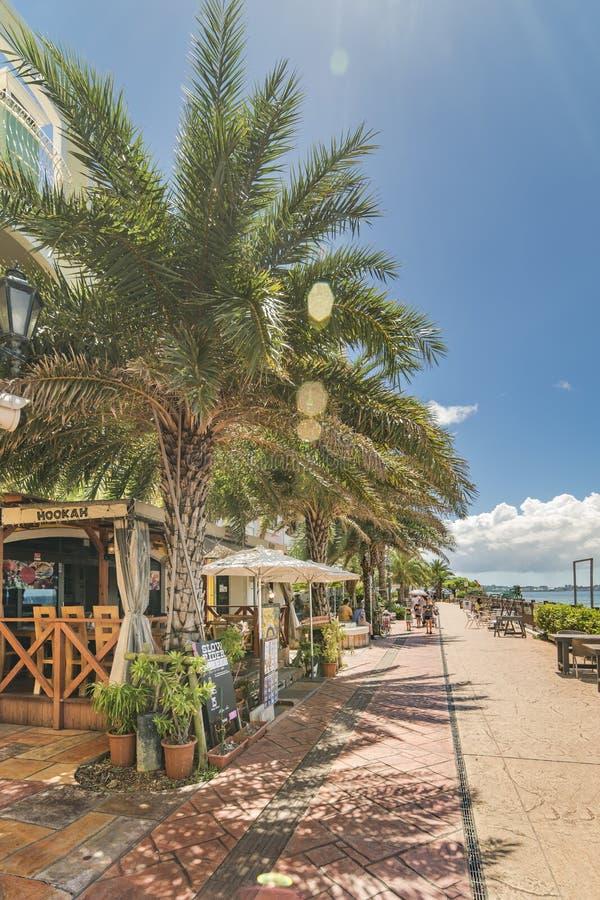 Strandküste gezeichnet mit Palmen der Verzerrungs-Küsten-, Eichenmode, der Depot-Insel-Küstengebäude und des Schiff-Hotels Campan lizenzfreie stockfotos