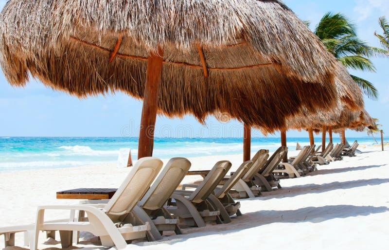 strandklubba royaltyfri bild
