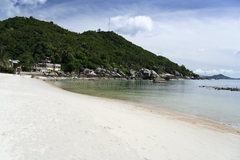 strandkohsamui tropiska thailand royaltyfri foto