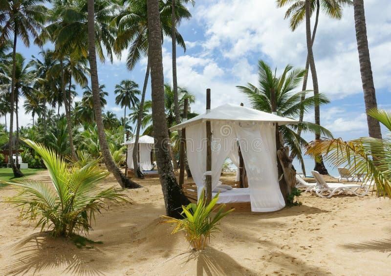 Strandkoja på stranden royaltyfri fotografi