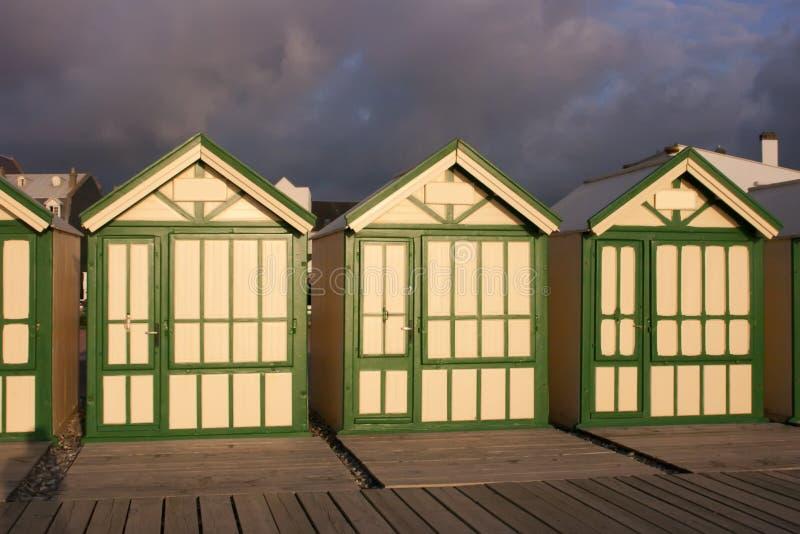 strandkojor fotografering för bildbyråer