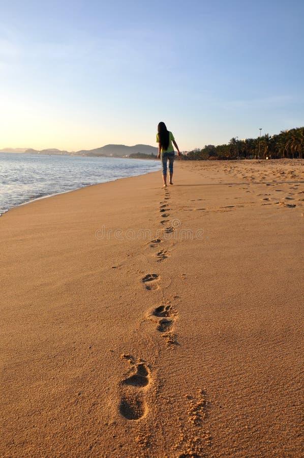 strandlandskap royaltyfria foton