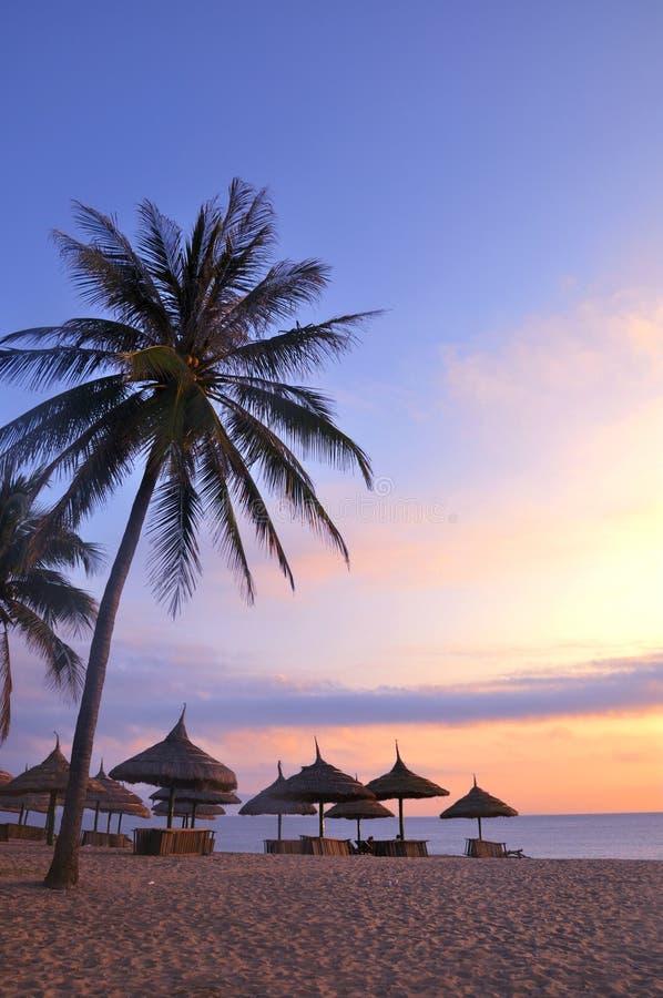 strandlandskap royaltyfri fotografi