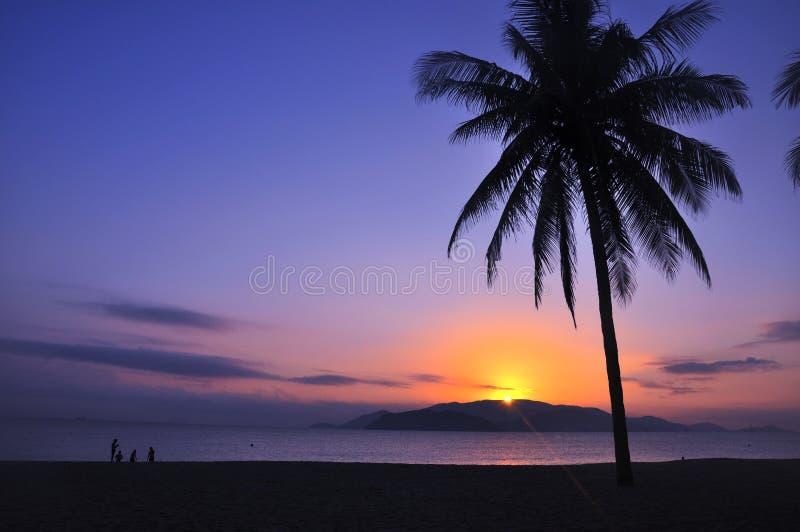 strandlandskap fotografering för bildbyråer
