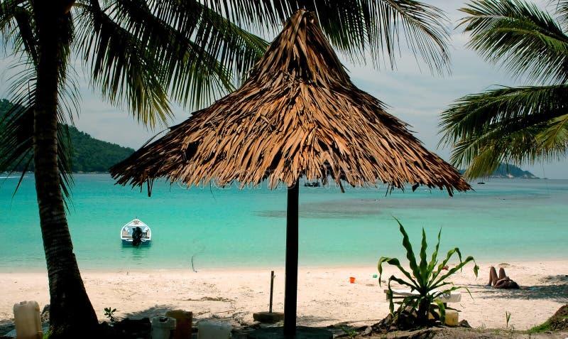 strandlandskap arkivbild