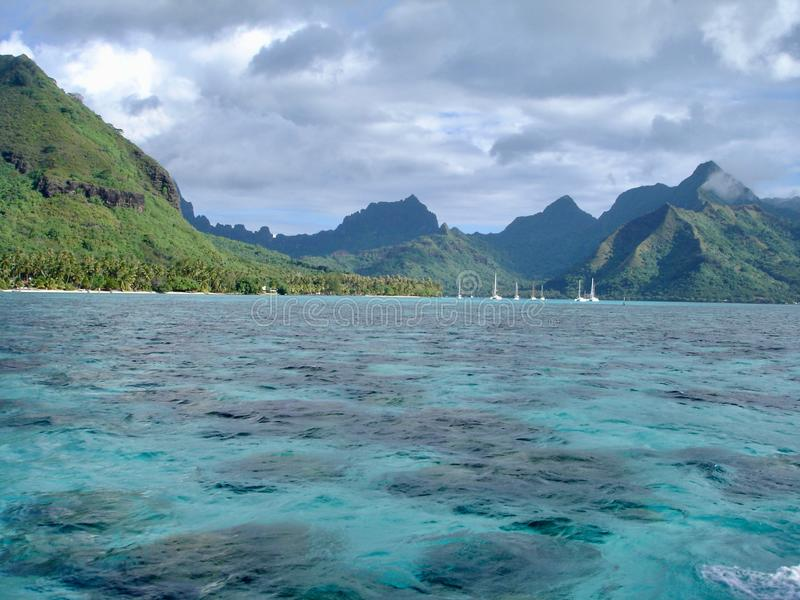 Strandlandskap i Moorea, Tahiti royaltyfri fotografi