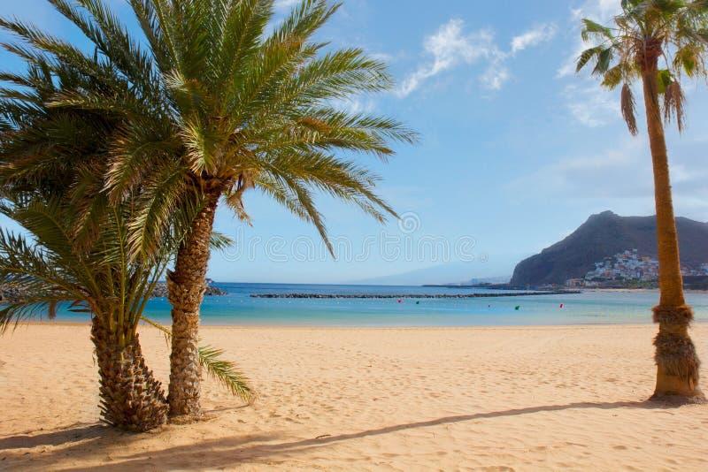 Strandlas Teresitas, Tenerife royaltyfri foto