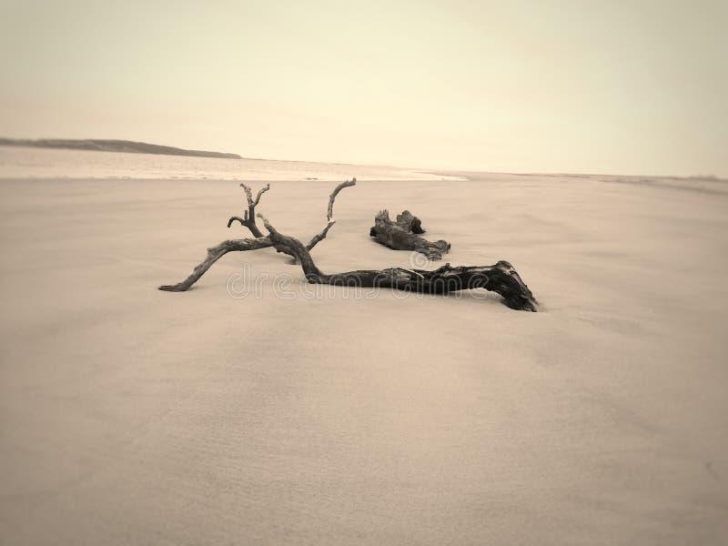 Strandlugn och ensamhet royaltyfri fotografi