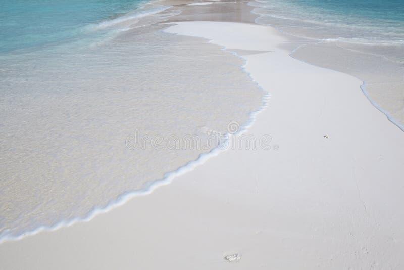 strandmaldives tropisk white royaltyfria bilder