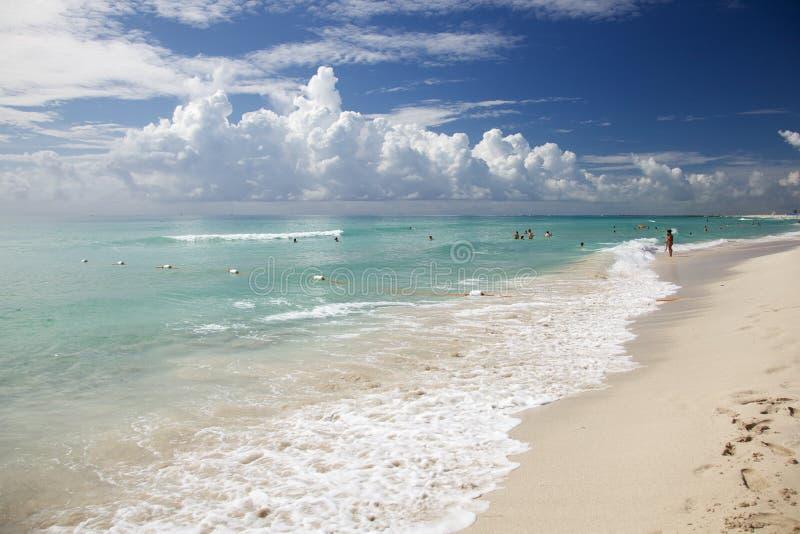 strandmiami kust fotografering för bildbyråer