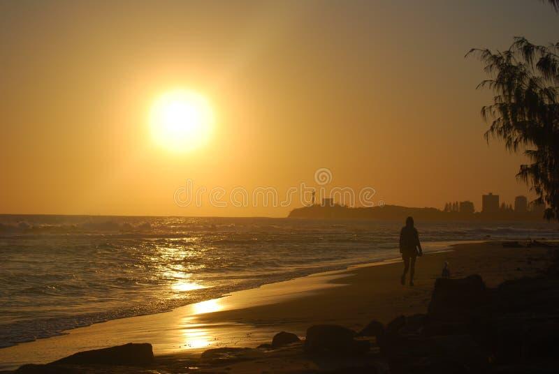 strandmorgonen går arkivbild