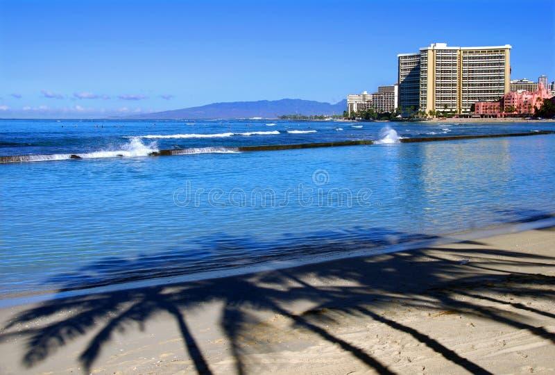 strandmorgonwaikiki royaltyfria bilder