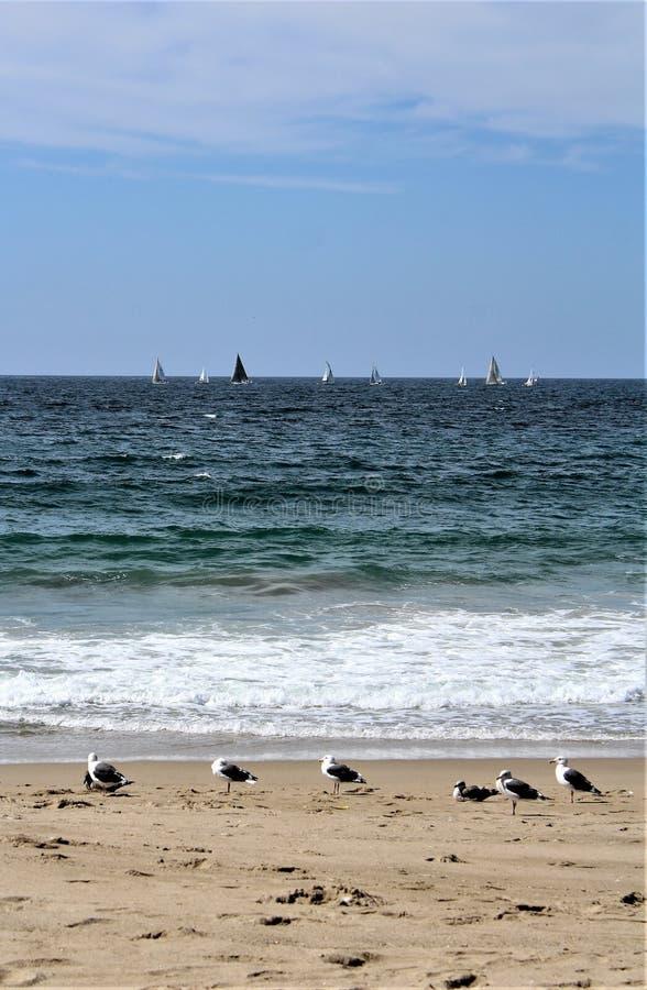 Strandnah an Hermosa-Strand Kalifornien in der Los Angeles County, Kalifornien, Vereinigte Staaten stockfoto