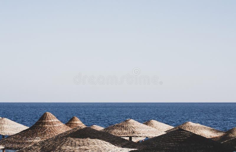 Strandparaplu's, Egypte, Sharm el Sheikh royalty-vrije stock foto's