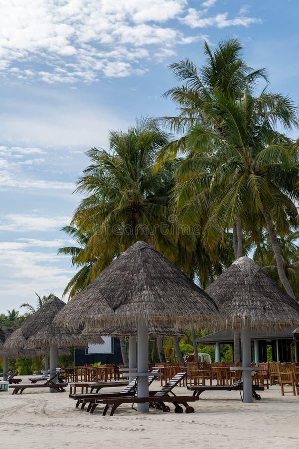 Strandparaplu's en houten zitkamerstoelen die op het strand door de oceaan worden opgesteld royalty-vrije stock fotografie